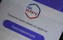 Саратовская область - 71-я в России по качеству электронных госуслуг