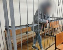 Подросток заключен под стражу за смертельное избиение матери
