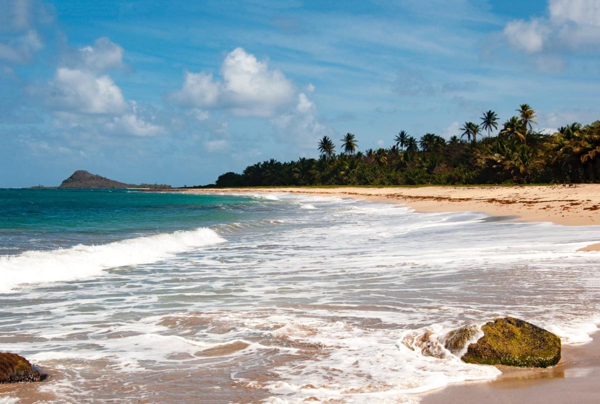 С начала весны украинцы смогут ездить без виз в одну из карибских стран