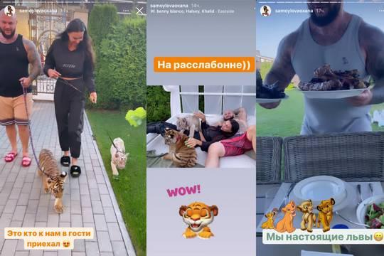 Миро жестко раскритиковала Джигана и Самойлову за игры с тигрятами