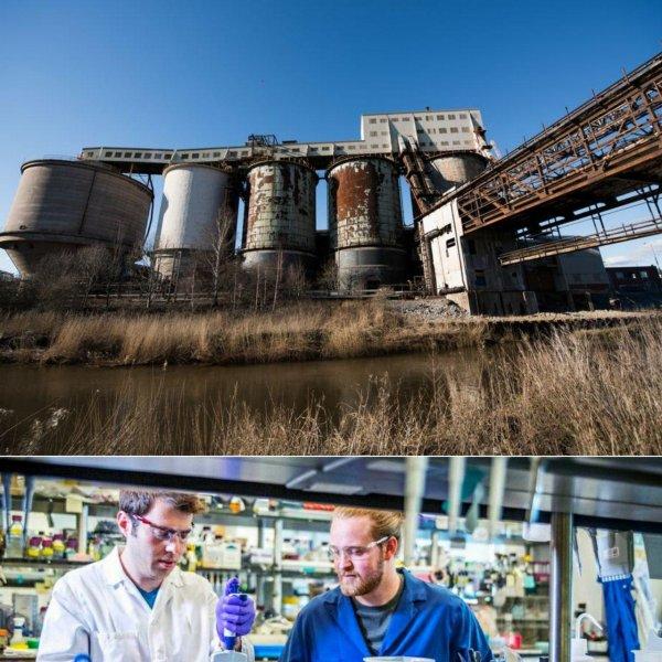 Во Владивостоке был разработан способ вывода радиоактивных элементов из водоёмов