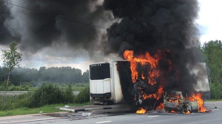 Легковушка влетела в фуру на трассе под Петербургом и вспыхнула — огненное видео