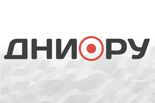 Отменен визит Помпео в Европу