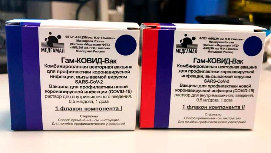 Россия передала Армении образцы вакцины 'Спутник V'