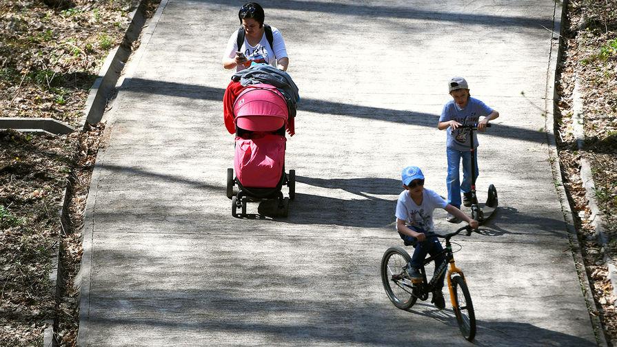 В России могут появиться дополнительные выплаты для многодетных матерей