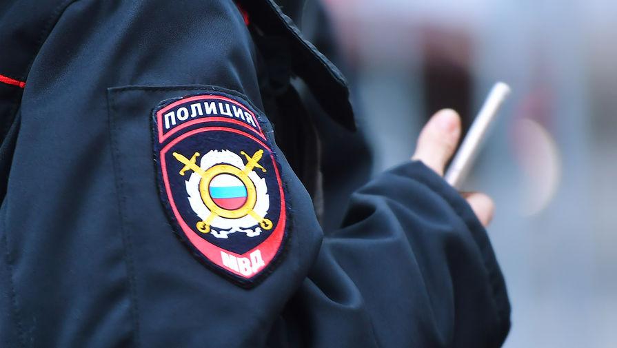 Полиция пресекла несанкционированный митинг в Москве