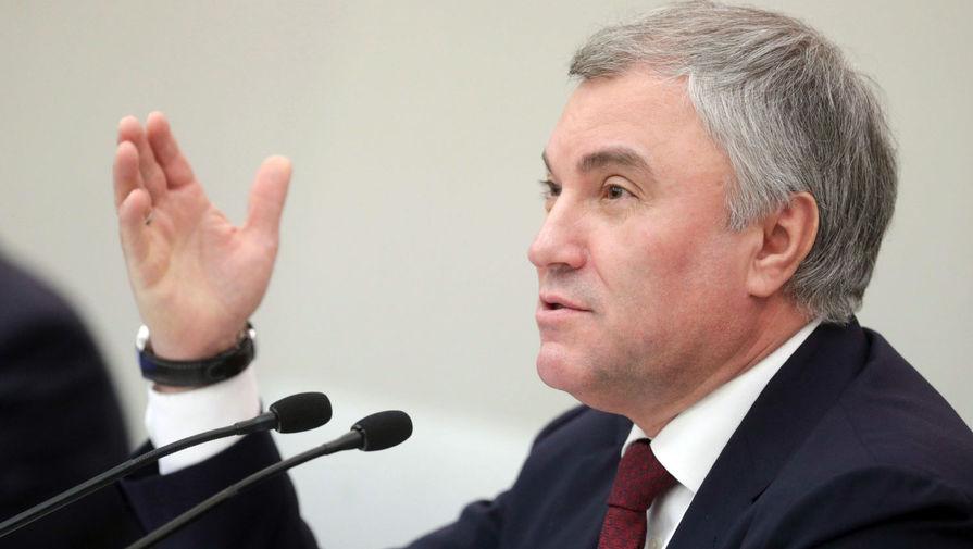 Володин прокомментировал ситуацию с запретом Zoom для российских госкомпаний