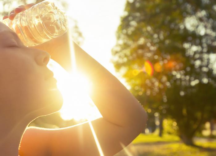 В августе россиян ждёт летняя жара
