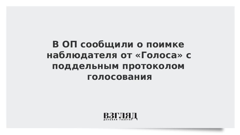 В ОП сообщили о поимке наблюдателя от «Голоса» с поддельным протоколом голосования