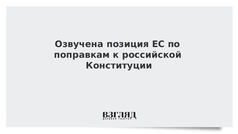 Озвучена позиция ЕС по поправкам к российской Конституции