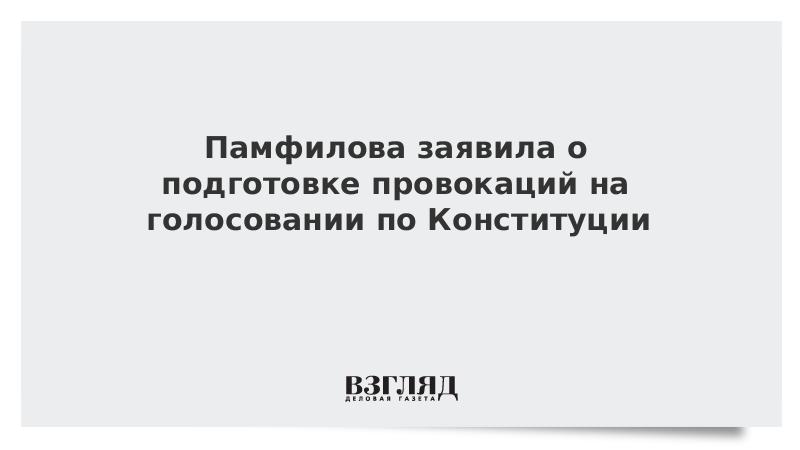 Памфилова заявила о подготовке провокаций на голосовании по Конституции