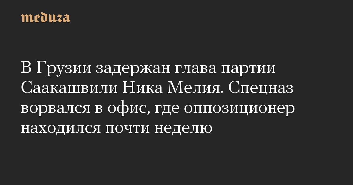 В Грузии задержан глава партии Саакашвили Ника Мелия. Спецназ ворвался в офис, где оппозиционер находился почти неделю