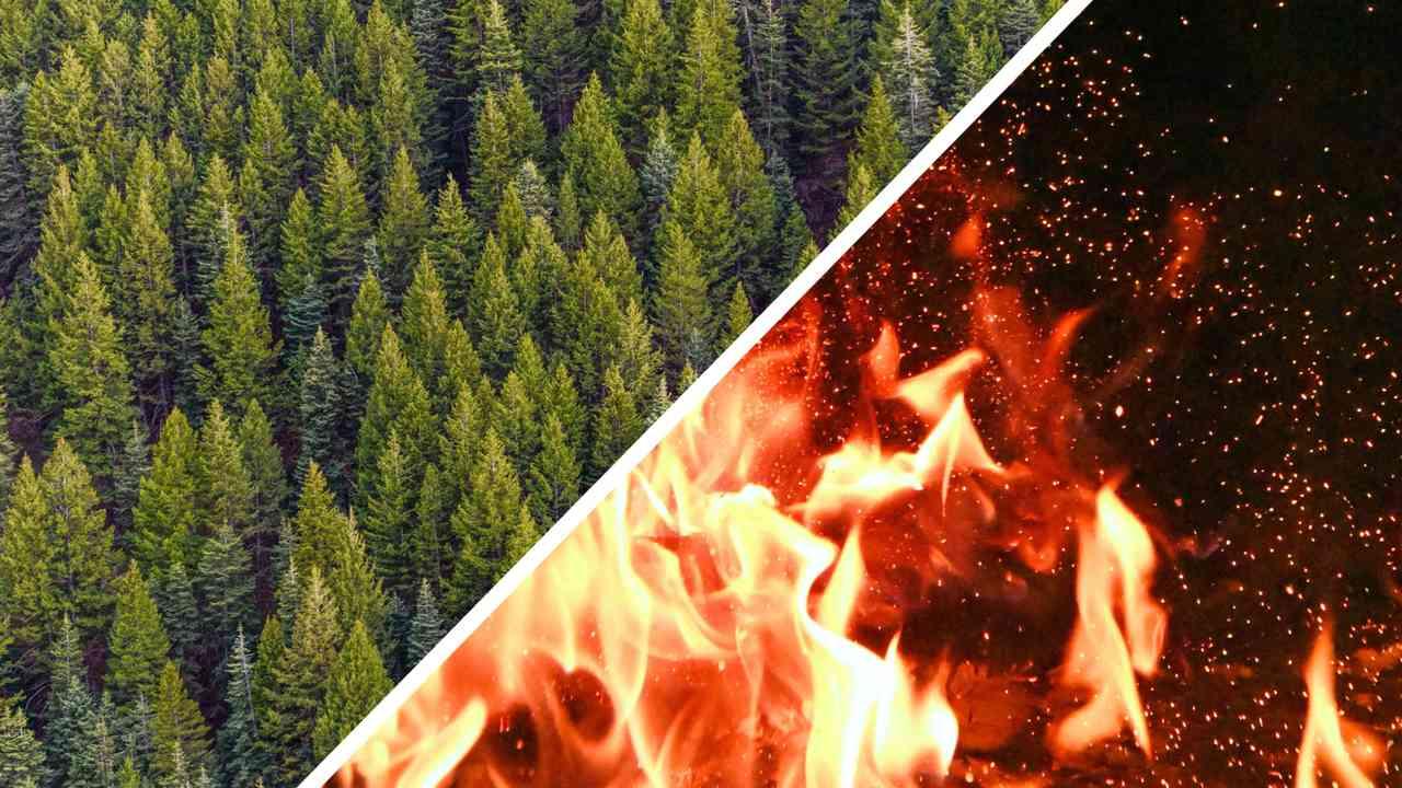 Из-за лесных пожаров в Якутии на видео не видно горизонт